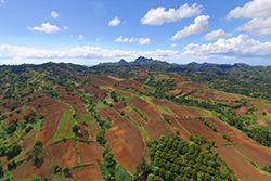 farmland in the Philippines
